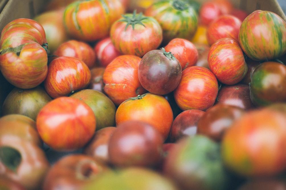 menjador tomaquets